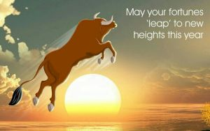 Happy new year for equity investors